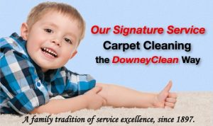 Signature Carpet Cleaning
